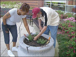 Members of the community planting herbs in front of the Cooper Green Mercy entrance.