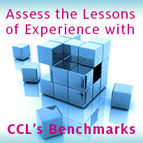 Assess the Lessons of Experience with CCL's Benchmarks