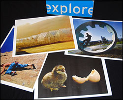 Picture cards from CCL's Visual Explorer tool support collaborative conversations about complex issues through images.